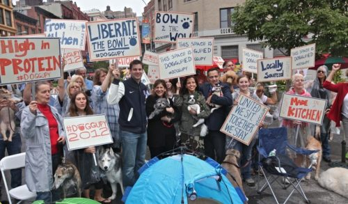 """Dogs Stage """"Doggupy"""" Protest, Demand Better Food For The 99 Percent"""
