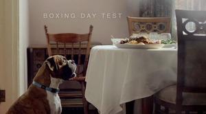 Boxer1-thumb-300x166-96952