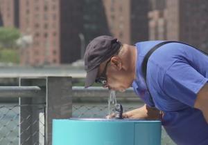 water-drinker