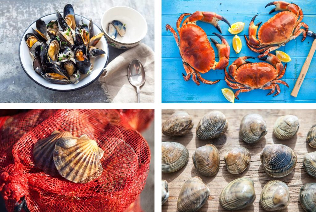 Seafood - PDSF 2015