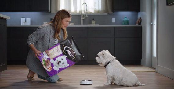 BBDO San Francisco and Cesar's New Ad Celebrates Dog Food That 'Tastes Like Happy'