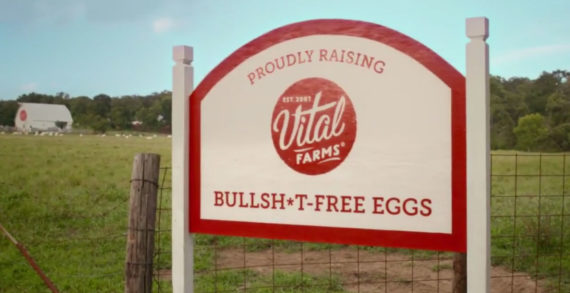Vital Farms Calls Bullsh*t on Cage-Free Eggs with New Campaign by Preacher