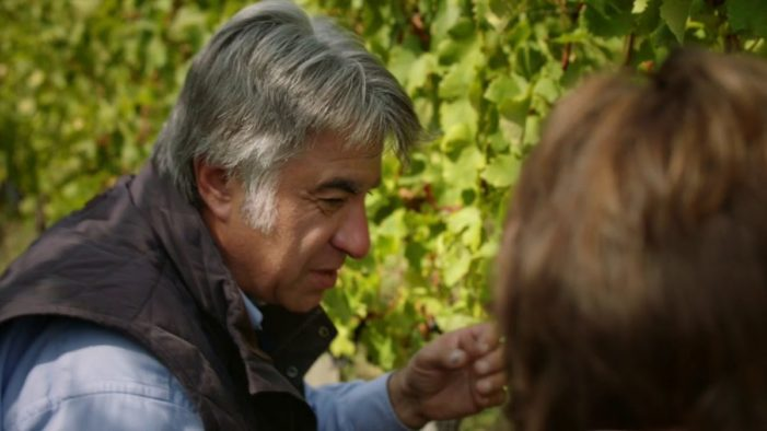 A Lidl Flavour To Savour Lidl's Latest Advert Focuses on Wine Provenance and Quality to Win Over Wine-Sceptics